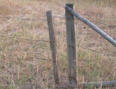 Tutorial Handy Dandy Fence Gates Our Prairie Nest A